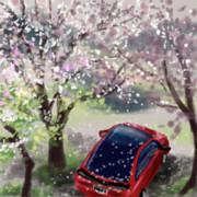 花の散る風景