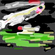 水面に映る白メダカ