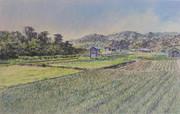 玉葱小屋のある風景