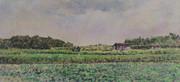 畑小屋のある風景