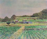 Field Ⅱ