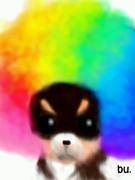 虹アフロ犬