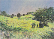 牧場の五月