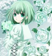 白薔薇 グミ