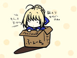 箱入りセイバーさん。