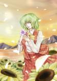 私は秋の終わりに咲く向日葵を知っている