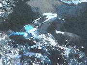 氷結ゲコゲコ