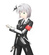 ナチスSSな魂魄妖夢