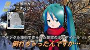 「デジタル技術で作られた架空の少女アイドル」さんの雪像倒れる