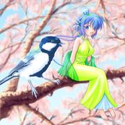 Singing with bird