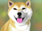 柴犬を描いてみた