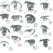 目コレクション