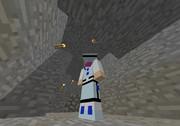 【Minecraft】タミフルメルラン【スキンサンプル】