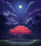 夜の紅葉(紅一葉)