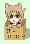 捨て猫沖田さん
