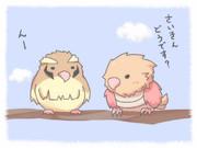 ポッポとオニスズメ