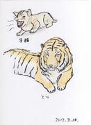 子猫とトラ。