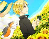夏目と向日葵
