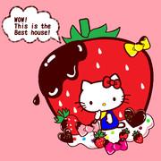 キティ ~おおきなイチゴとチョコレートのおうち♪~