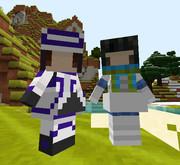 【Minecraft】littleMaidMobでクー・フーリンとセタンタ