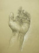 手(鉛筆と白コンテによるデッサン)