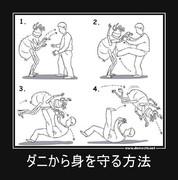 ダニから身を守る方法