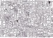 地図状線描1