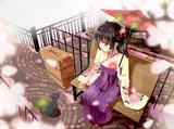 猫と桜と袴少女
