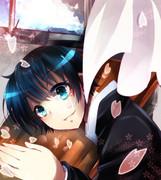 桜と球磨川さん