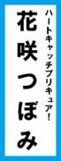 オールスター感謝祭の名前札(花咲つぼみver.)