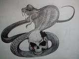 ニコ生にて コブラ和彫り風
