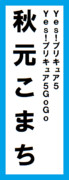 オールスター感謝祭の名前札(秋元こまちver.)