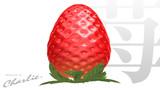 ちゃーりぃ式「苺」ハイポリモデル