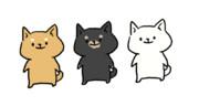 柴犬【GIFアニメ】