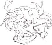 ゴッホの蟹