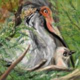 放鳥トキのひな誕生