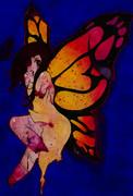 羽は所詮見かけ・・・どんなに美しい蝶も傷ついている