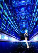 藍玉の大聖堂 カテドラル・アトランティス