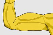 ものすごく筋肉質で、ありえないほど理想的なんだけど何か違う腕