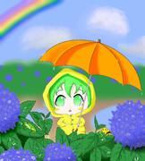 もうすぐ梅雨か~