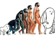 人類の進化2