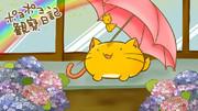 雨あがりポヨ