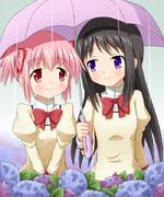 まどほむ×梅雨=相合傘