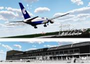 芽縞空港広告ポスター