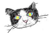 ずっと前飼ってた猫のレオを思い出したので走り描きw