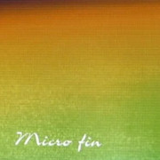 Micro fin