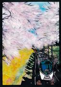 山北桜と371系あさぎり号