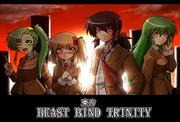 東方Beast Bind Trinity PlayerSide