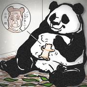 パンダ生まれました。