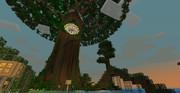 巨木という名のロマン